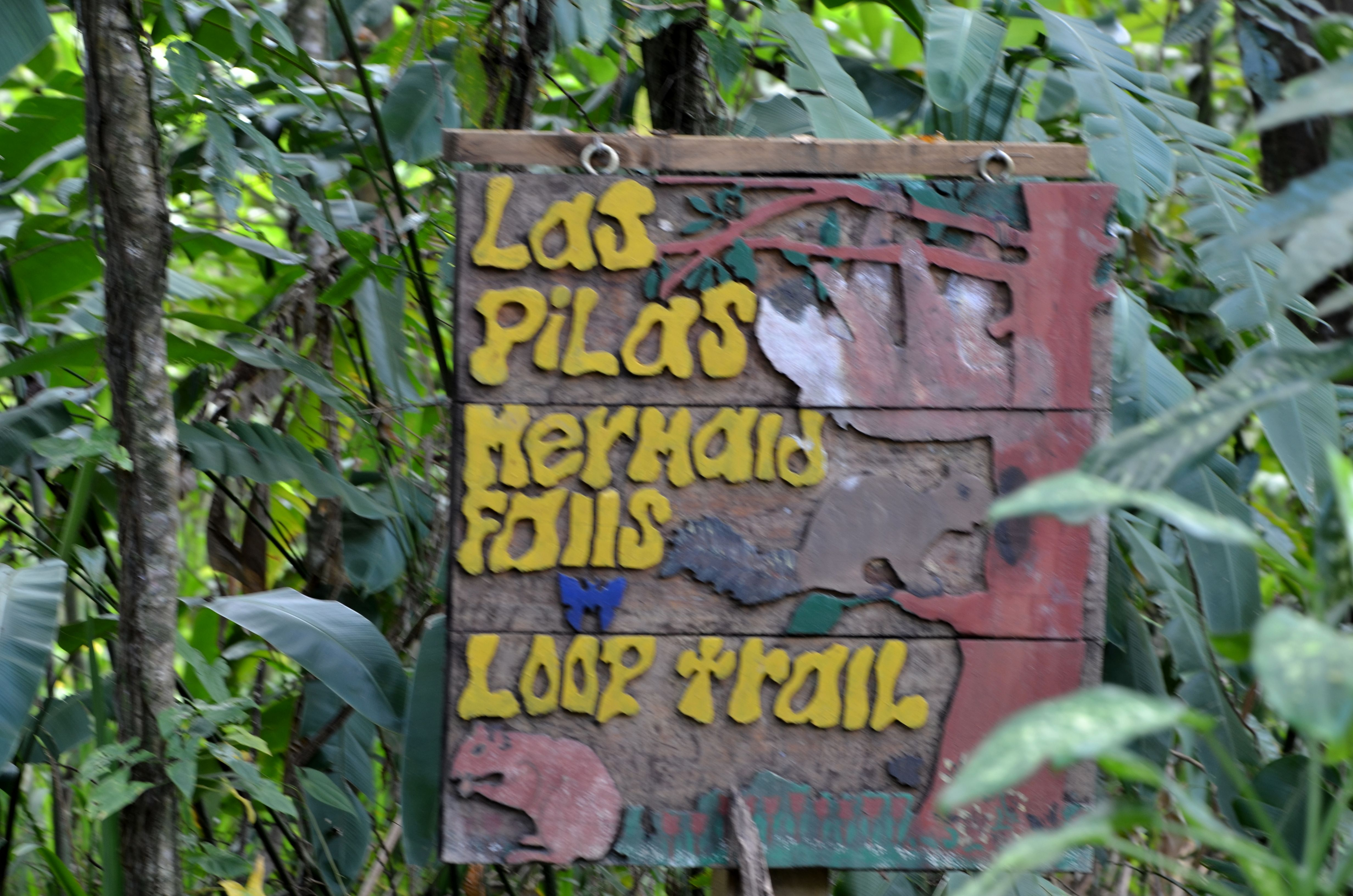MermaidF alls - Sign